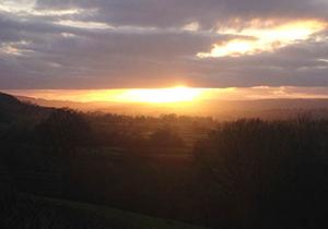 Sutton Hill coppice