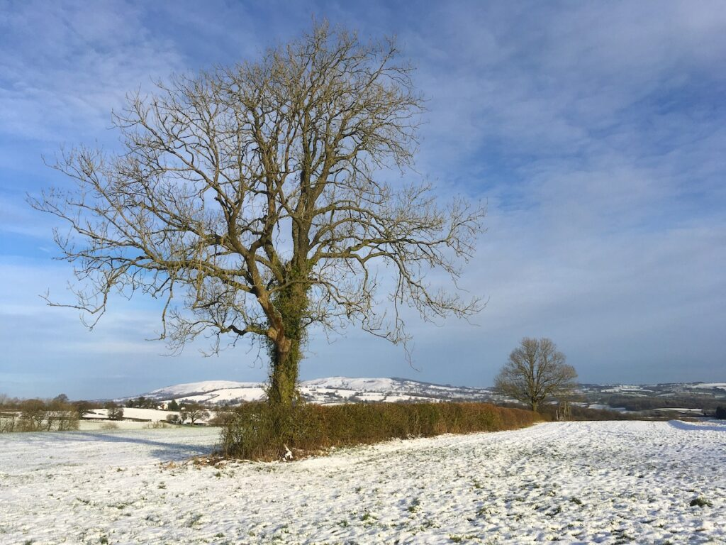Clee Hills Shropshire